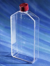 3001 Costar® 225cm² Rectangular Canted Neck Cell Culture Flask with Vent Cap