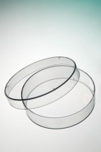 BP53-06 Corning® Gosselin™ Petri Dish 60 x 15 mm, 6 Vents, Aseptic, Double Outer Bag, 15/Bag, 1620/Case